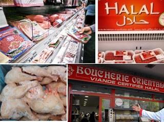 halal-16082010-art.jpg